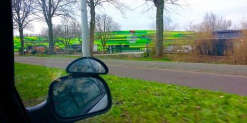 Dieren Opvang Amsterdam