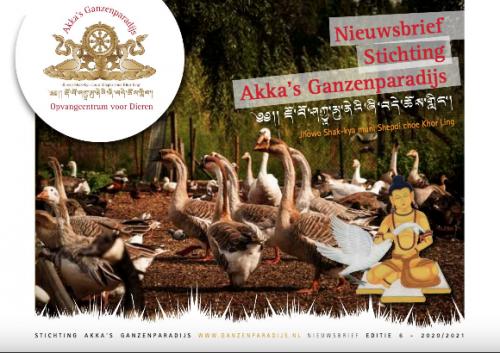 nieuws-akka-ganzenparadijs