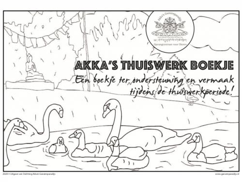 Corona Thuiswerkboekje Akka's Ganzenparadijs